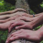 Curso Entrenamiento en el Cultivo de la Compasión Segovia