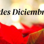 Nuestras novedades de diciembre
